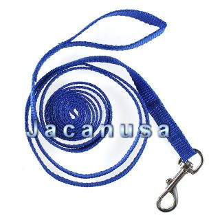 Blue Nylon Dog Leash 5/8 Inch Wide Small to Medium Pet Lead 7 Ft Long
