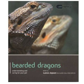Newly listed Bearded Dragon   Pet Expert Understanding and Caring for