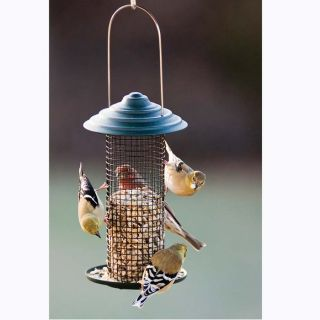 Metal Mini Magnum Black Oil Sunflower Screen Bird Feeder   from