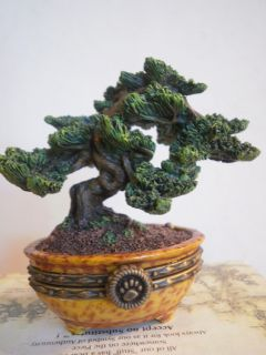 MS Wangs Bonsai Tree Boyds Bear Treasure Box Boyd Bears The Value of