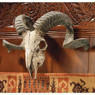 Exotic Animal Replica RAM Skull Curled Horns Wall Mounted Trophy Wall