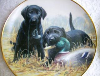Franklin Mint Dog Plates Black Lab & Golden Retriever James Killen