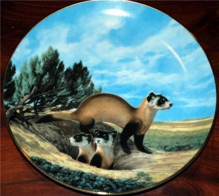 George Will Nelson LtdEd Plate Black Footed Ferret