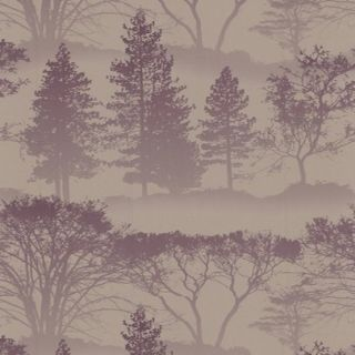 50 203   Mirage   Tree   Forest   Woods   Graham & Brown Wallpaper