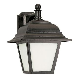 Sea Gull Lighting Fluorescent Outdoor Wall Lantern in Black   Energy