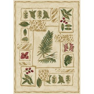 Home Dynamix Optimum Floral Novelty Rug   11011 100