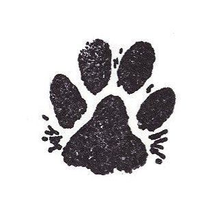 Dog Rubber Stamp   Paw Print With Fur Medium 1003C (Size