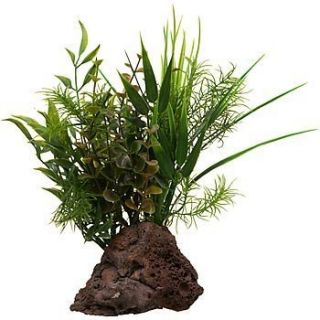 Rockgarden Lava Rock Aquarium Plant