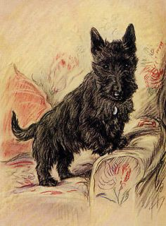 SCOTTISH TERRIER SCOTTIE DOG IN CHAIR LITTLE DOG PRINT