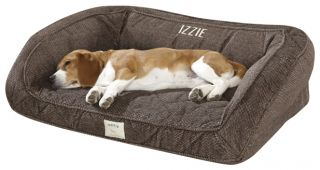 Deep Dish Dog Bed With Memory Foam / Small Dogs Up To 40 Lbs.