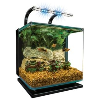Contour Glass 3 Gallon LED Aquarium Kit, 12 L X 12 W X 12.5 H
