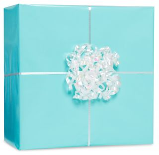 Robins Egg Blue Gift Wrap Kit
