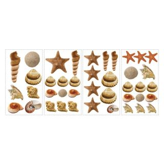 Sea Shells Peel and Stick Wall Decals Multicolor   RMK1259SCS